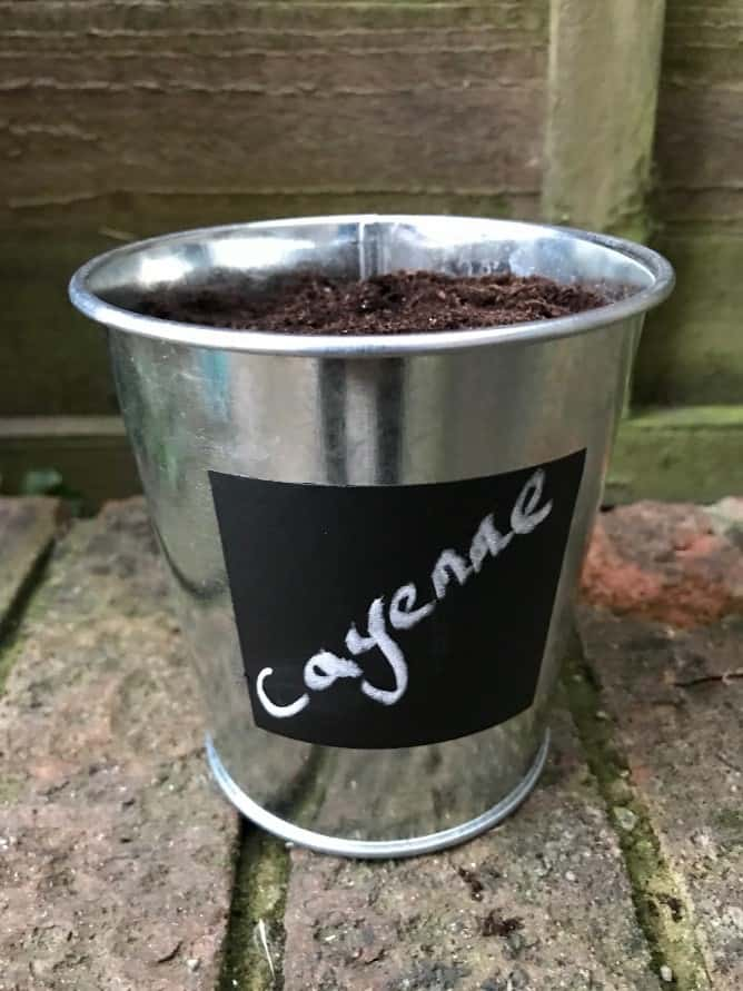 Cayenne Pepper Pot