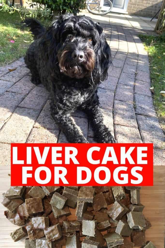 liver cake for dogs